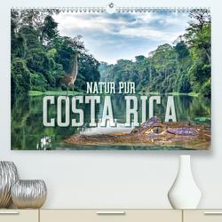 Natur pur, Costa Rica (Premium, hochwertiger DIN A2 Wandkalender 2021, Kunstdruck in Hochglanz) von Gödecke,  Dieter