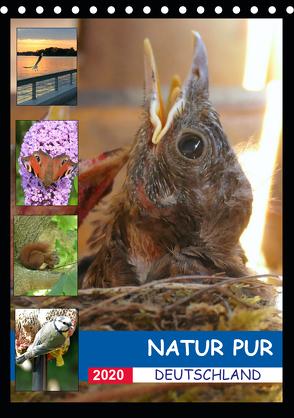 Natur pur – Deutschland (Tischkalender 2020 DIN A5 hoch) von Krüger,  Stefan