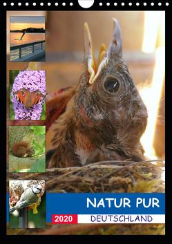 Natur pur – Deutschland (Wandkalender 2020 DIN A4 hoch) von Krüger,  Stefan