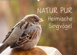 NATUR PUR Heimische Singvögel (Wandkalender 2019 DIN A2 quer) von Dietzel,  Karin