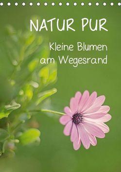 NATUR PUR Kleine Blumen am Wegesrand (Tischkalender 2019 DIN A5 hoch) von Dietzel,  Karin