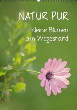 NATUR PUR Kleine Blumen am Wegesrand (Wandkalender 2019 DIN A2 hoch) von Dietzel,  Karin