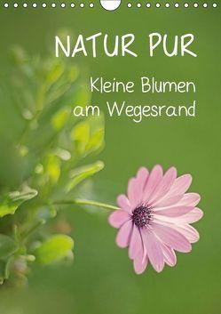 NATUR PUR Kleine Blumen am Wegesrand (Wandkalender 2019 DIN A4 hoch) von Dietzel,  Karin
