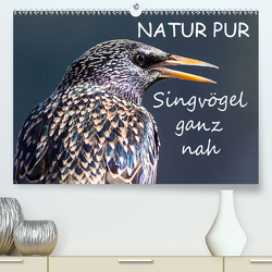NATUR PUR – Singvögel ganz nah (Premium, hochwertiger DIN A2 Wandkalender 2021, Kunstdruck in Hochglanz) von Dietzel,  Karin