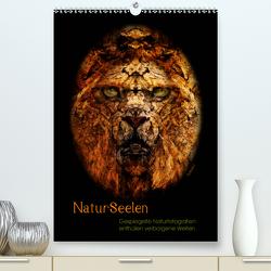Natur Seelen (Premium, hochwertiger DIN A2 Wandkalender 2021, Kunstdruck in Hochglanz) von OylesArt