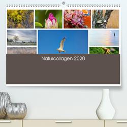 Naturcollagen 2020 (Premium, hochwertiger DIN A2 Wandkalender 2020, Kunstdruck in Hochglanz) von Nöh,  Christine