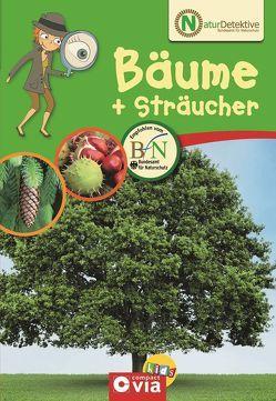 Naturdetektive: Bäume & Sträucher von Kuhn,  Birgit