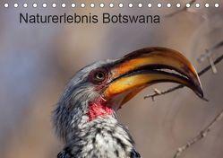 Naturerlebnis Botswana (Tischkalender 2019 DIN A5 quer) von Willy Bruechle,  Dr.