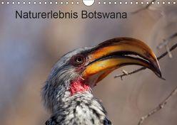 Naturerlebnis Botswana (Wandkalender 2019 DIN A4 quer) von Willy Bruechle,  Dr.