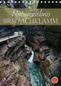 Naturerlebnis Breitachklamm (Tischkalender 2019 DIN A5 hoch) von Cross,  Martina