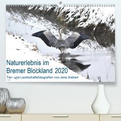Naturerlebnis im Bremer Blockland (Premium, hochwertiger DIN A2 Wandkalender 2020, Kunstdruck in Hochglanz) von Siebert,  Jens