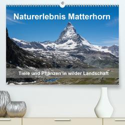 Naturerlebnis Matterhorn (Premium, hochwertiger DIN A2 Wandkalender 2020, Kunstdruck in Hochglanz) von Pelzer (Pelzer-Photography),  Claudia