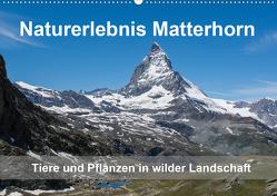 Naturerlebnis Matterhorn (Wandkalender 2020 DIN A2 quer) von Pelzer (Pelzer-Photography),  Claudia