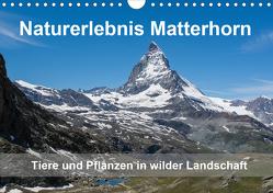 Naturerlebnis Matterhorn (Wandkalender 2020 DIN A4 quer) von Pelzer (Pelzer-Photography),  Claudia