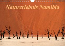 Naturerlebnis Namibia (Wandkalender 2020 DIN A4 quer) von Hawerkamp,  Hans-Wolfgang