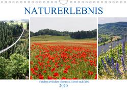 Naturerlebnis – Wandern zwischen Hunsrück, Mosel und Eifel (Wandkalender 2020 DIN A4 quer) von Frost,  Anja