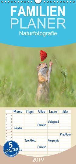 Naturfotografie – Familienplaner hoch (Wandkalender 2019 <strong>21 cm x 45 cm</strong> hoch) von Spranz,  Henrik