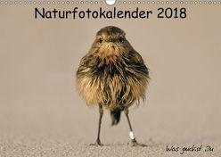 Naturfotokalender 2018 (Wandkalender 2018 DIN A3 quer) von Hübner,  Holger
