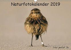 Naturfotokalender 2019 (Wandkalender 2019 DIN A3 quer) von Hübner,  Holger