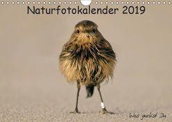 Naturfotokalender 2019 (Wandkalender 2019 DIN A4 quer) von Hübner,  Holger