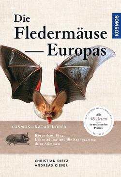Naturführer Fledermäuse Europas von Dietz,  Christian, Kiefer,  Andreas