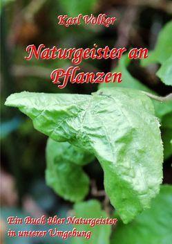Naturgeister an Pflanzen von Völker,  Karl