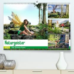 Naturgeister Die Grünen Feen (Premium, hochwertiger DIN A2 Wandkalender 2021, Kunstdruck in Hochglanz) von Gaymard,  Alain