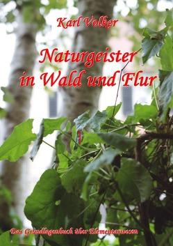 Naturgeister in Wald und Flur von Völker,  Karl
