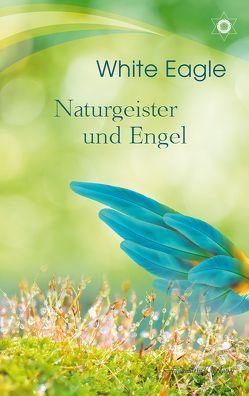 Naturgeister und Engel von Eagle,  White