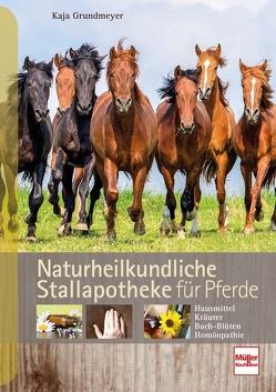 Naturheilkundliche Stallapotheke für Pferde von Grundmeyer,  Kaja