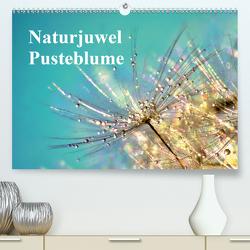 Naturjuwel Pusteblume (Premium, hochwertiger DIN A2 Wandkalender 2020, Kunstdruck in Hochglanz) von Delgado,  Julia