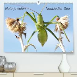 Naturjuwelen – Neusiedler See (Premium, hochwertiger DIN A2 Wandkalender 2020, Kunstdruck in Hochglanz) von Bachmeier,  Günter