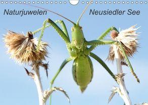 Naturjuwelen – Neusiedler See (Wandkalender 2018 DIN A4 quer) von Bachmeier,  Günter