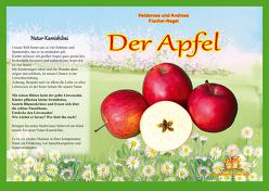 Naturkamishibai – Der Apfel von Fischer-Nagel Andreas, Fischer-Nagel,  Heiderose, Zornik,  Marzena