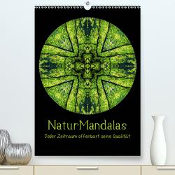 NaturMandalas – Jeder Zeitraum offenbart seine Qualität (Premium, hochwertiger DIN A2 Wandkalender 2021, Kunstdruck in Hochglanz) von OylesArt