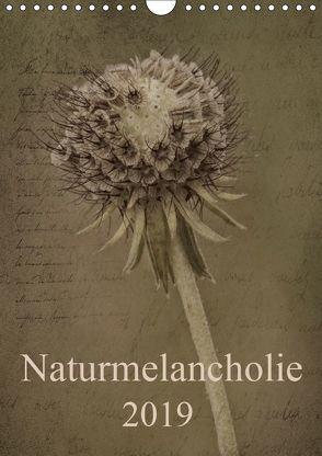 Naturmelancholie 2019 (Wandkalender 2019 DIN A4 hoch)