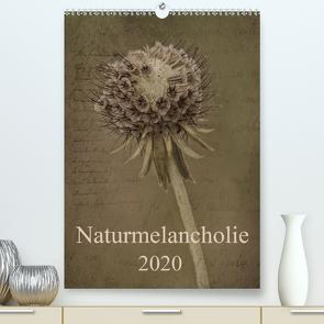 Naturmelancholie 2020 (Premium, hochwertiger DIN A2 Wandkalender 2020, Kunstdruck in Hochglanz) von Arnold Joseph,  Hernegger