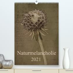 Naturmelancholie 2021 (Premium, hochwertiger DIN A2 Wandkalender 2021, Kunstdruck in Hochglanz) von Arnold Joseph,  Hernegger