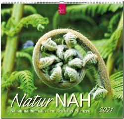 NaturNAH – Nahaufnahmen aus dem Reich der Pflanzen