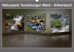 Naturpark Teutoburger Wald – Silberbach (Wandkalender 2020 DIN A3 quer) von Hobscheidt,  Ernst
