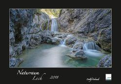 Naturraum Lech 2018 von Fiebrandt,  Detlef