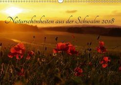 Naturschönheiten aus der Schwalm 2018 (Wandkalender 2018 DIN A3 quer) von Klapp,  Lutz