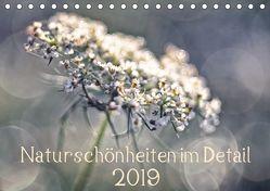 Naturschönheiten im Detail (Tischkalender 2019 DIN A5 quer) von Karius,  Kirsten