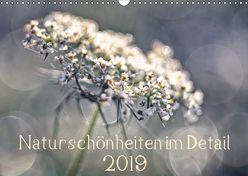 Naturschönheiten im Detail (Wandkalender 2019 DIN A3 quer) von Karius,  Kirsten