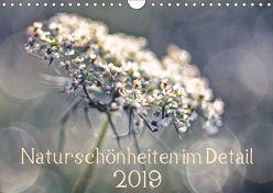 Naturschönheiten im Detail (Wandkalender 2019 DIN A4 quer) von Karius,  Kirsten