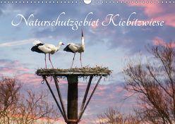 Naturschutzgebiet Kiebitzwiese (Wandkalender 2018 DIN A3 quer) von Störmer,  Roland