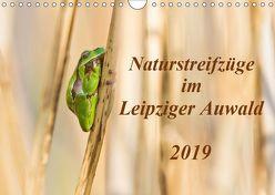 Naturstreifzüge im Leipziger Auwald (Wandkalender 2019 DIN A4 quer) von Beyer,  Daniela