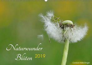 Naturwunder Blüten (Wandkalender 2019 DIN A2 quer) von Kelle-Dingel CoKeDi-Photographie,  Cordula