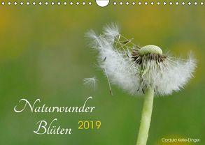 Naturwunder Blüten (Wandkalender 2019 DIN A4 quer) von Kelle-Dingel CoKeDi-Photographie,  Cordula