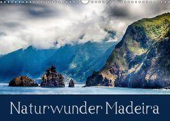 Naturwunder Madeira (Wandkalender 2019 DIN A3 quer) von Werner Partes,  Hans